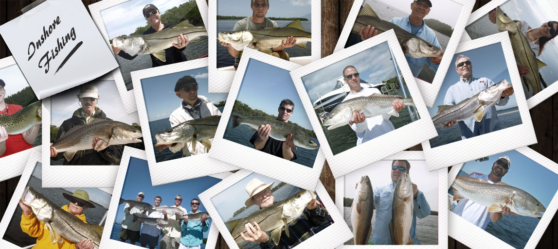 Inshore-collage