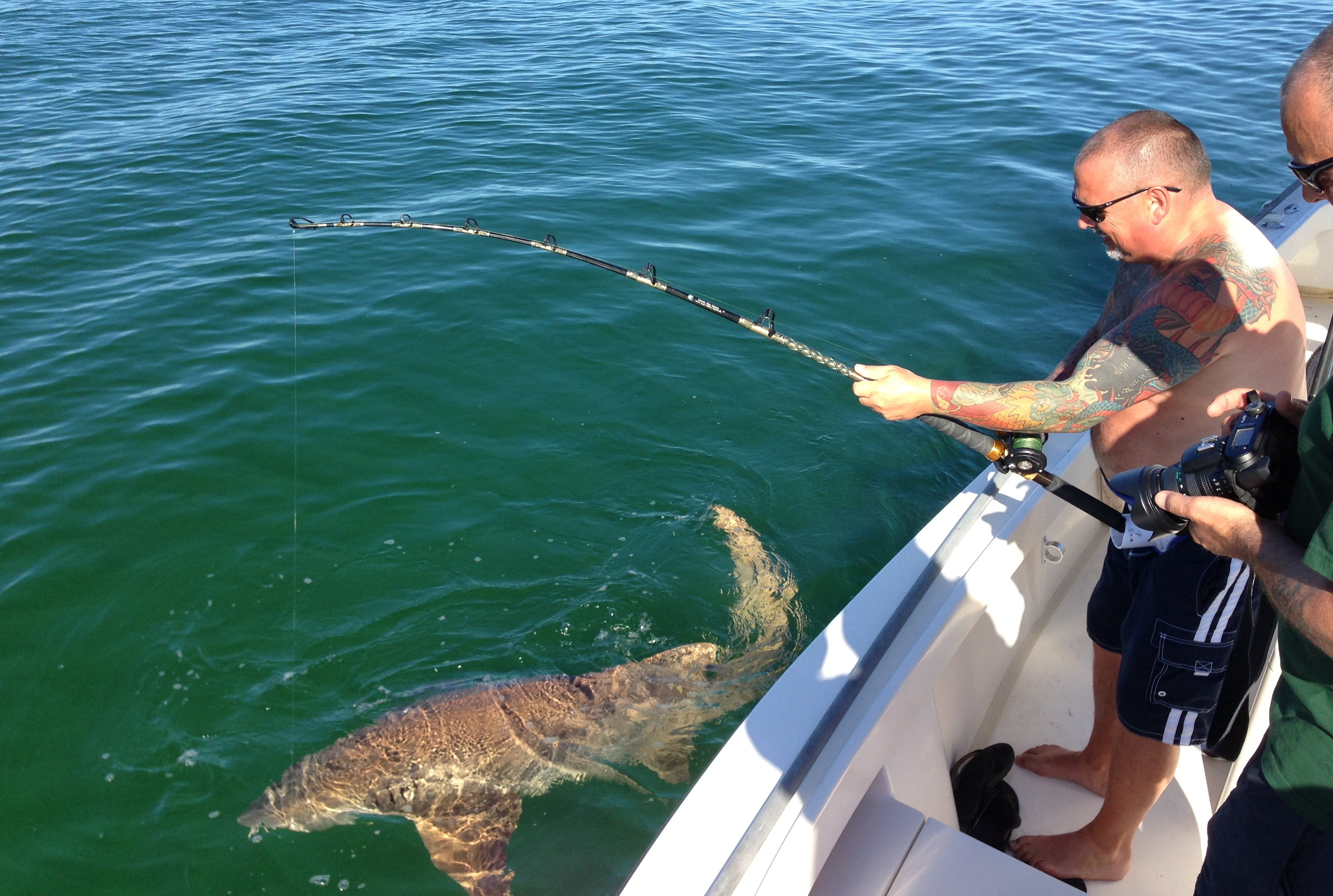 Shark fishing tampa fishing for How to shark fish
